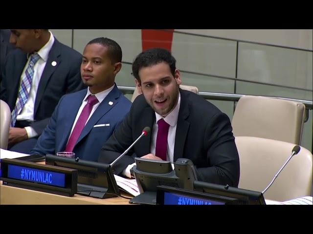 Consejo de Derechos Humanos (CDH) en la Reunión Plenaria de NYMUNLAC 2019